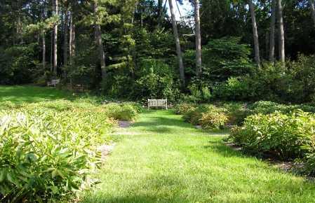 N Arboretum